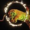 Цирки в Новоалександровской