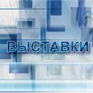 Выставки Новоалександровской